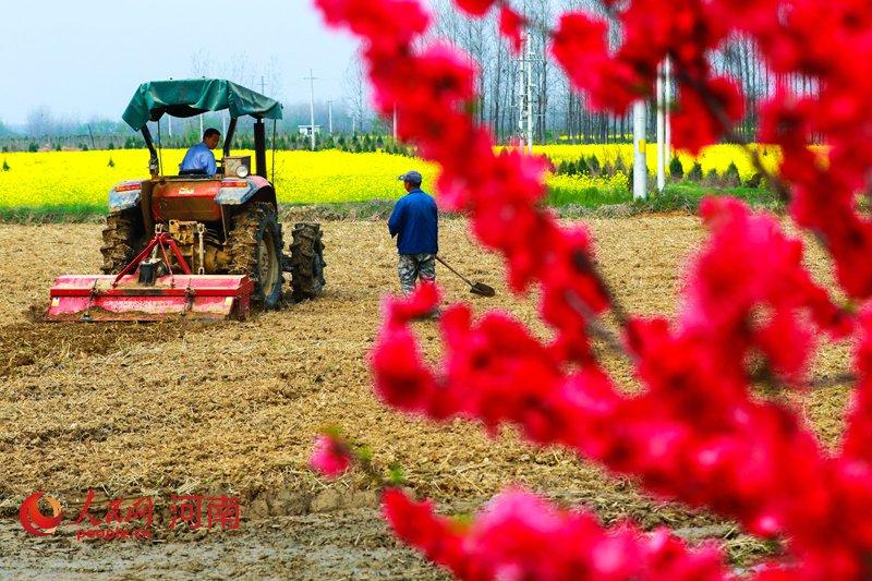 江苏关于印发《2020年全省农机安全生产工作要点》的通知