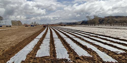 内蒙古关于农业机械试验鉴定申报和到期换证有关事项的通知