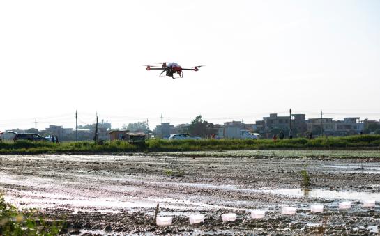 极飞开展农业无人机水稻直播与人工直播对比演示