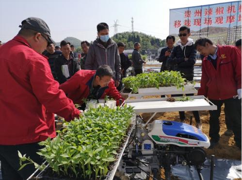 贵州省辣椒生产全程机械化现场观摩会在遵义市播州区召开