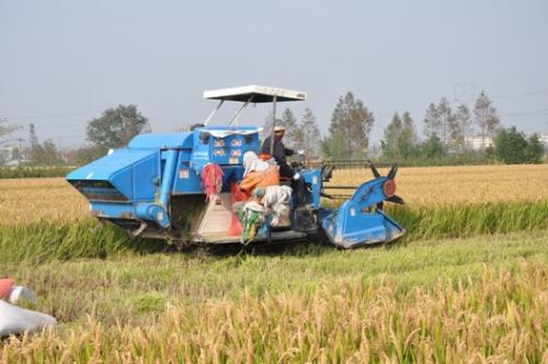 宁波市截至4月30日农机购置补贴实施进度