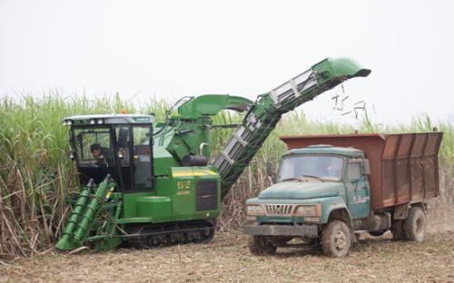 广西2020—2022年甘蔗生产全程机械化作业补贴实施细则