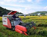 浙江省将实施报废老旧农机补助政策