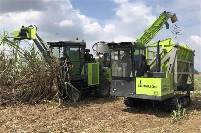 AC60轮式甘蔗收获机