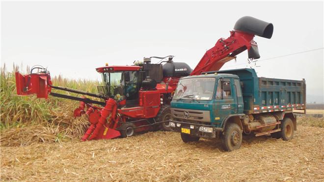 凯斯A8000甘蔗收获机