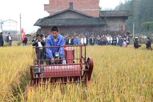 重庆市印发农机购置补贴机具核验规程的通知