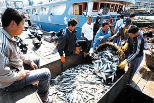 农业农村部:深入推进渔船和捕捞许可管理制度改革