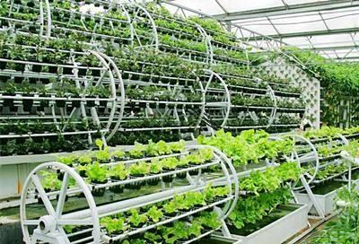 """如何通过""""互联网+农业""""整合塑造农业品牌?"""