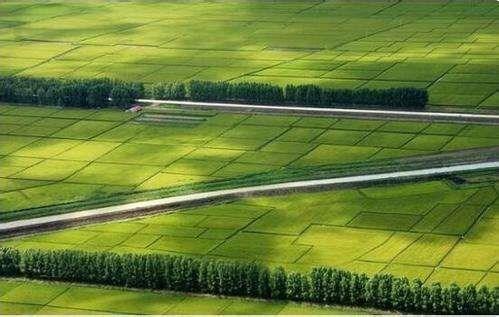 农业农村部办公厅印发《通知》要求加强农业农村法治建设 依法推进乡村振兴