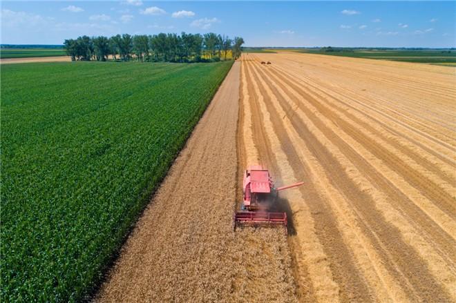 现代农业需培育更多新农民