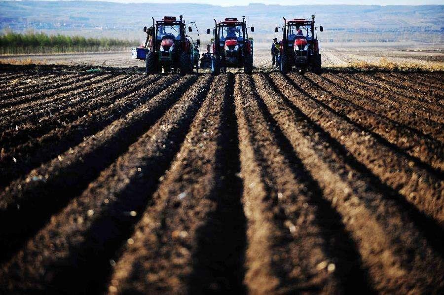 黑龙江2018年新型农业经营主体总数超过20万