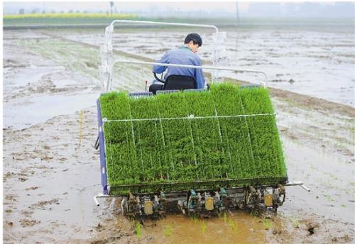 浙江省关于2018年度第五批省级农机推广鉴定获证产品的公告