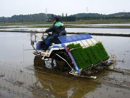 福建省关于临时关闭我省农机购置补贴辅助管理系统的通知