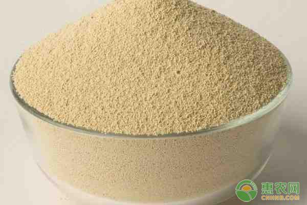 今日豆粕价格行情分析:元旦将至,豆粕价格还会一跌再跌吗?