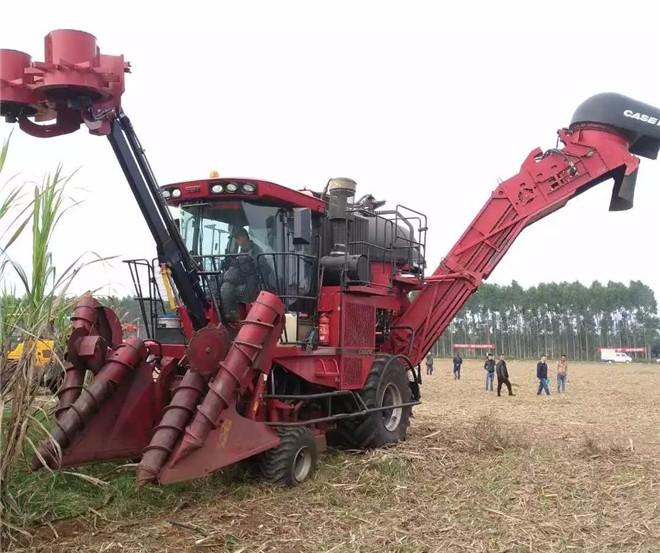 凯斯A8000甘蔗收获机在广东省甘蔗生产全程机械化推广现场会上获好评