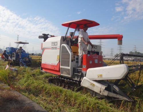 浙江省对三门博洛尼机械等9家产销企业违规经营行为处理的通报