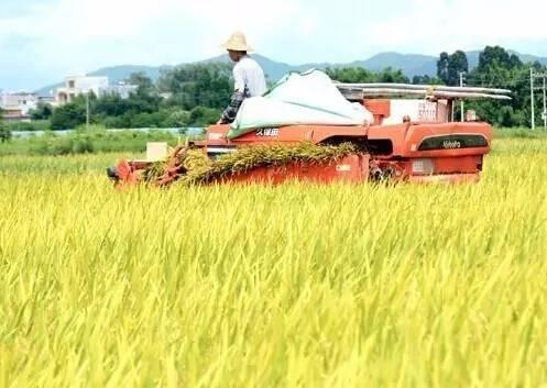 """福建省农机购置补贴资金提前一个月实现""""零结余"""""""