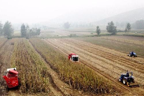 回眸2018:农机社会化服务蓬勃发展