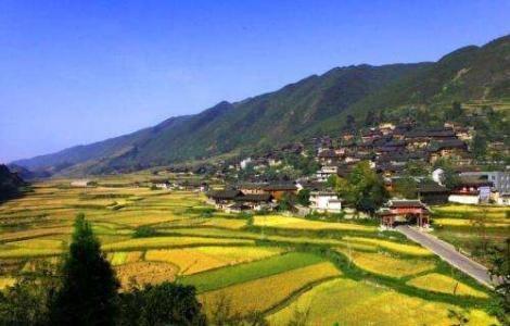 河南:稳产保粮 推进乡村振兴
