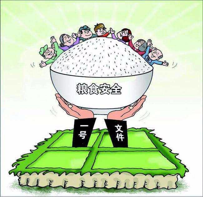 增强乡村保障粮食安全功能