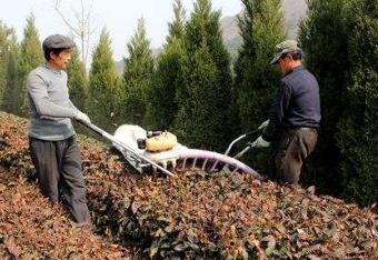 福建省关于部分双人平行(弧形)式茶树修剪机与牵引式风送喷雾机产销企业违规行为调查处理的通报