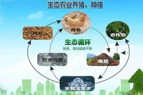 全国生态循环农业建设工作综述:让天更蓝水更碧土地更肥沃