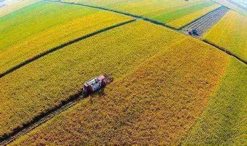 胡春华:加强农田水利基本建设 夯实粮食生产水利基础