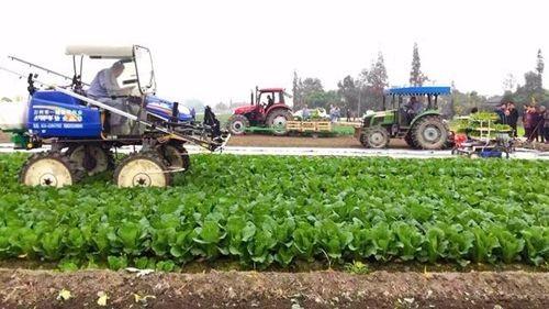 考察学习成都市蔬菜生产机械化的调查报告