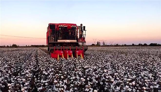 刘旭:大力提升农机装备质量可靠性建设水平