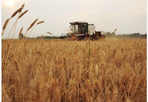 全国农作物耕种收综合机械化率超过67%