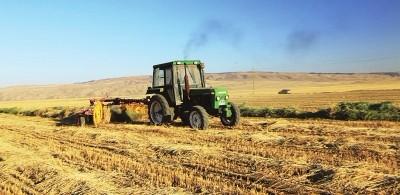 机械化打响山丹县燕麦草品牌