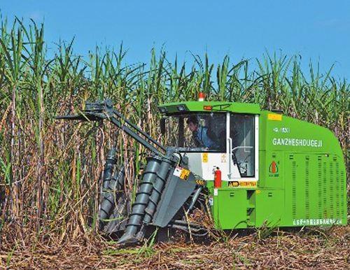 广西:破解糖料蔗生产机械化难题