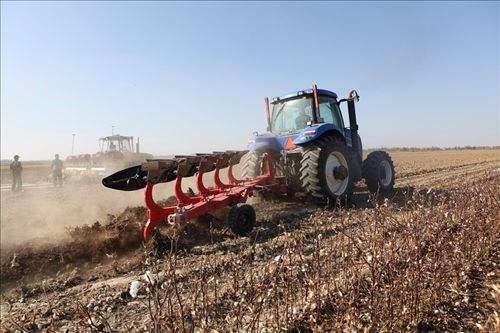 陈巧敏:加快推进农机农艺融合