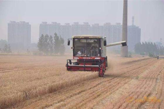 """农村中心召开国家重点研发计划""""智能农机装备""""重点专项总体专家组2018年度工作总结会议"""