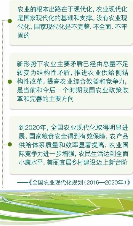 张红宇:走有中国特色的现代农业发展道路