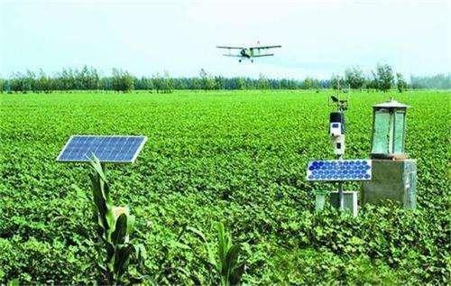 农业现代化不能让小农户掉队