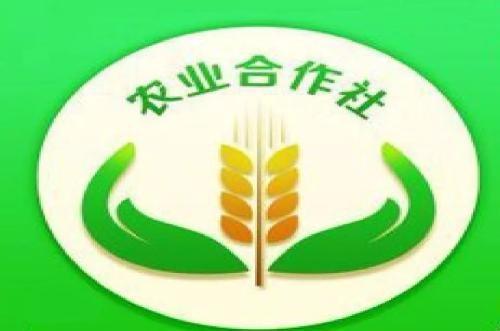 农业农村部公布2018年国家农民合作社示范社和全国农民用水合作示范组织名单的通知