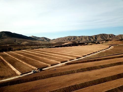 辽宁省关于印发耕地地力保护补贴实施方案的通知