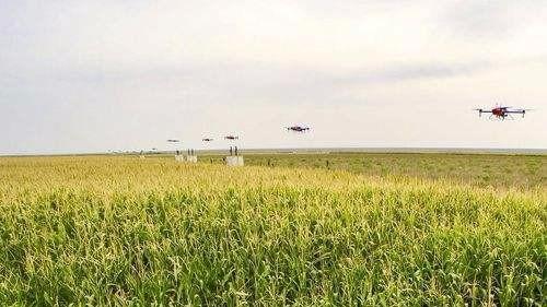 全国人大代表、黑龙江佳木斯市委书记徐建国: 给农业插上科技翅膀