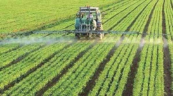 安徽省农业科学院副院长赵皖平代表: 扶持农业适度规模经营