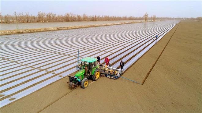 新疆加大支农贷款力度助力春耕备耕