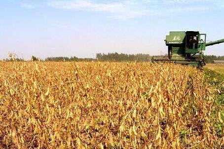 黑龙江省关于印发《2019年全省农机化技术推广工作要点》的通知