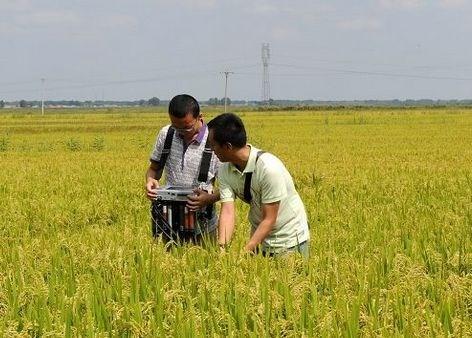 北京今年全面启动农业农村污染治理工作