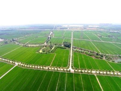 高标准农田建设迎来更多利好