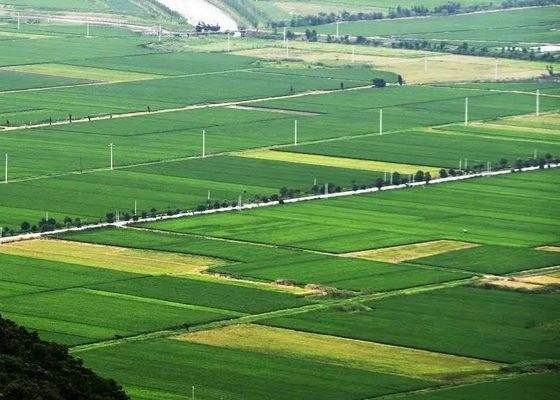 绿色循环优质高效特色农业促进项目进展顺利 今年继续在山西、吉林等十省区开展试点