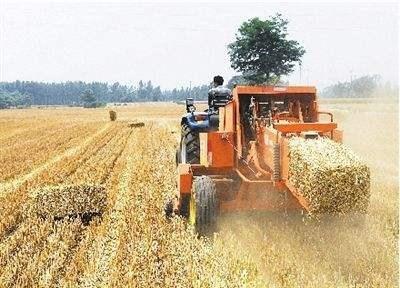 农业农村部办公厅关于全面做好秸秆综合利用工作的通知