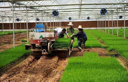 应对农机行业下行压力的对策研究