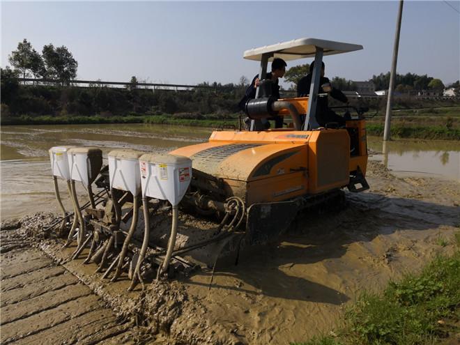 机插秧同时施肥——这项技术让化肥减量30%