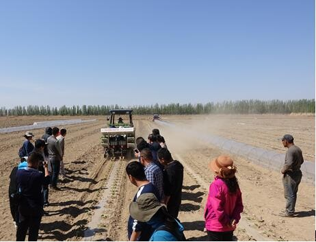 耕整地机械创新团队在新疆吐鲁番开展西甜瓜耕种机械化田间试验示范