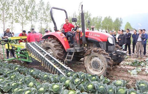 青岛市推进蔬菜机械化生产 助力乡村产业振兴